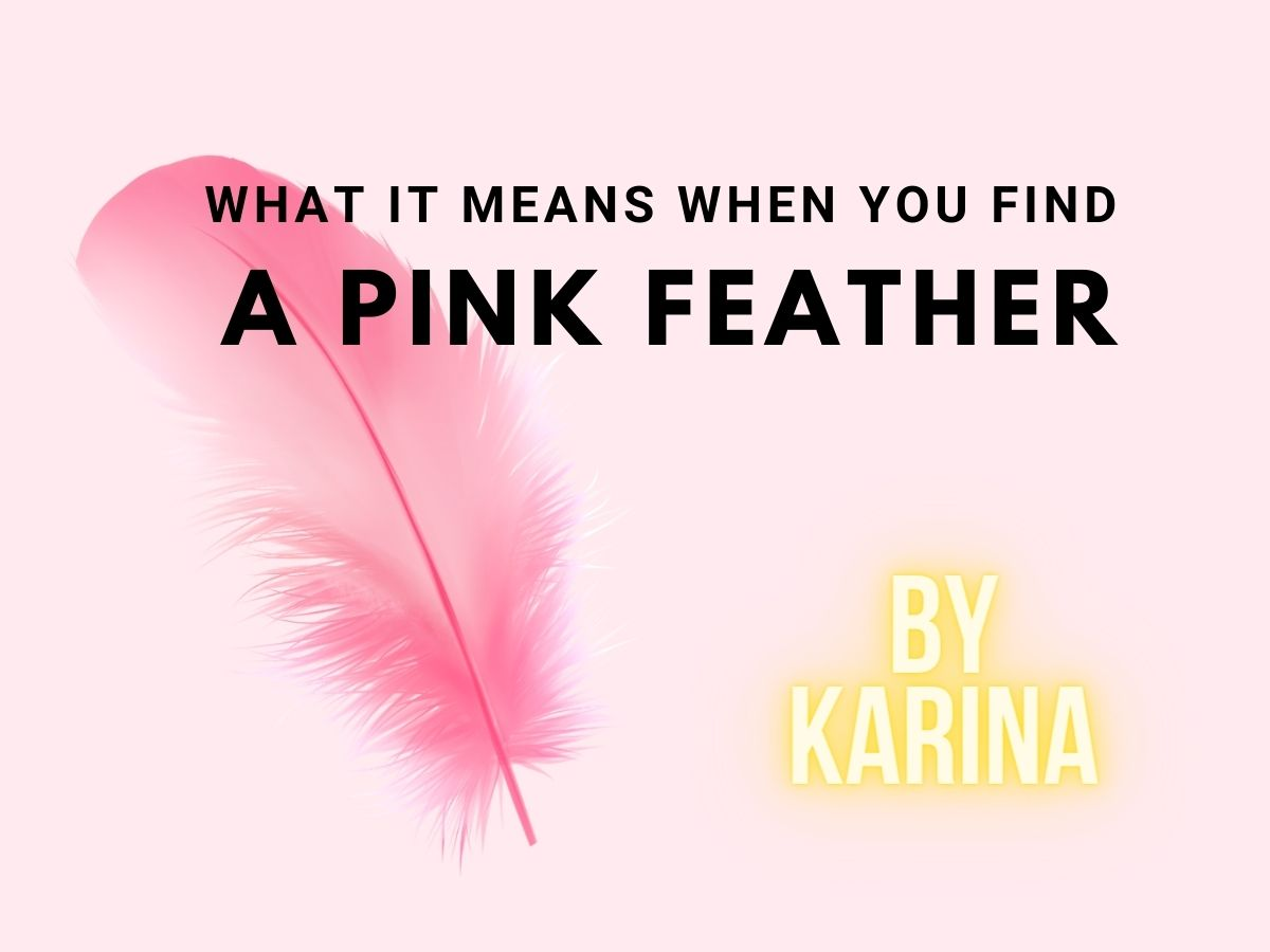 Pink Feather Meaning