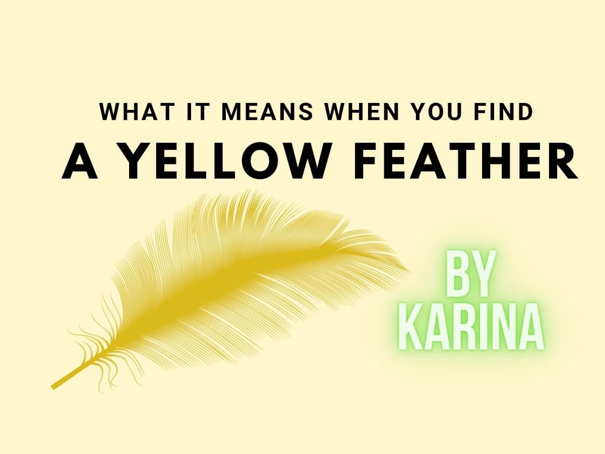 Yellow Feather Meaning